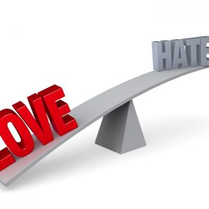 #LoveMoreStopHate